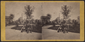 Reservoir Square, 6th Ave. and 41st St, from Robert N. Dennis collection of stereoscopic views.png