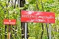 Rezerwat przyrody Morysin, park.jpg