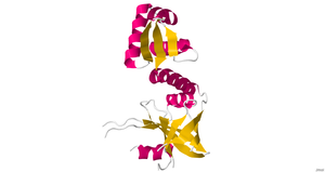 Riboflavin kinase - Image: Riboflavkinase