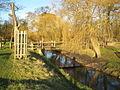 Richmond Park, Beverley Brook - geograph.org.uk - 676707.jpg