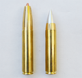 Rifle-cartridge-50-mayhem.png