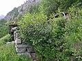 Riparo Alpino - panoramio.jpg
