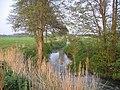 River Flit, Beadlow, Clophill, Beds - geograph.org.uk - 166972.jpg