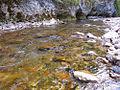 River Mali Rzav in the vlillage Visoka in Serbia - 7634.CR2.jpg
