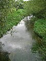 River Wissey - geograph.org.uk - 544156.jpg
