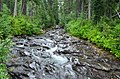 River above Narada Falls, Mount Rainier National Park 01.jpg
