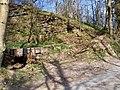 Roadside Quarry - geograph.org.uk - 398222.jpg