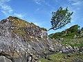Roche moutonnée - geograph.org.uk - 484690.jpg