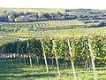 Rote Halde - geo.hlipp.de - 22626.jpg