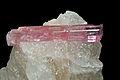 Rubellite sur gangue de quartz (Paprok Mine, Kunar, Nuristan - Afghanistan) 2.jpg