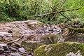 Ruisseau d'Audiernes 06.jpg