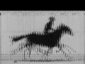 Running horse moving illusion.png