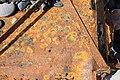 Rust American Star wreckage (3304944740).jpg