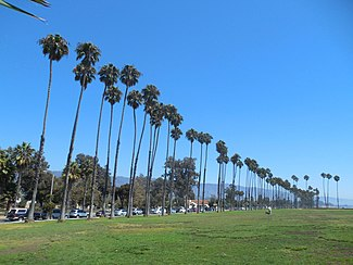Santa Barbara Hotels On Beach For Cheap