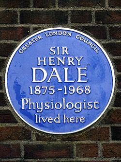 Sir henry dale 1875 1968 physiologist lived here