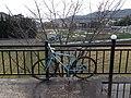 Sagahirosawa Ikeshitacho, Ukyo Ward, Kyoto, Kyoto Prefecture 616-8307, Japan - panoramio (1).jpg