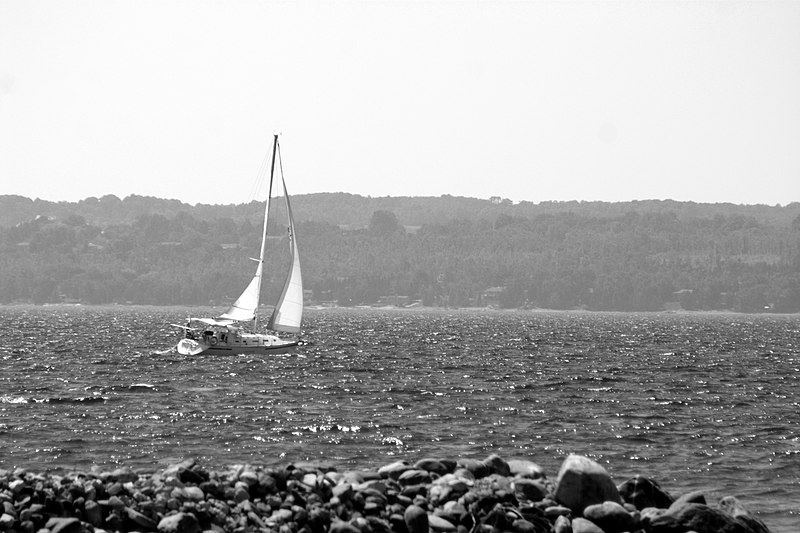 File:Sailing b&w (33049680).jpg