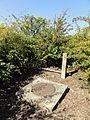 Sains-en-Gohelle - Fosse n° 13 - 13 bis du Groupe de Béthune, puits n° 13 (C).JPG