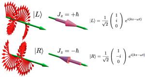 Spin angular momentum of light - Left and right circular polarization and their associate angular momenta