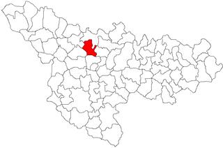 Commune in Timiș, Romania