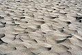 Sand (2278479212).jpg
