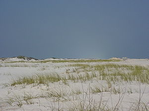 Santa Rosa Island (Florida) - Santa Rosa Island, looking east, with characteristic sea oats.