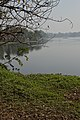 Santragachi Lake - Howrah 2013-01-25 3592.JPG