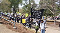 Save UNO Jazz Funeral 2010.jpg