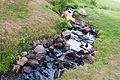 Schlangenbad am morgen 09.09.2012 08-21-05.jpg