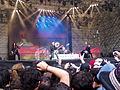 Scorpions (14).JPG