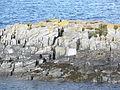 Scotland - Seil 02.JPG