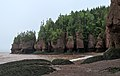 Sea stacks - Hopewell Rocks1.jpg