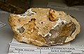 Selce bionda - Collezione mineralogica - Università dell'Insubria.jpg