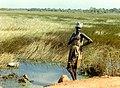 Senegalese Woman, 1967 (39854291504).jpg