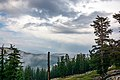 Sequoia National Forest (48885035248).jpg