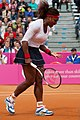 Serena Williams (7105785359).jpg