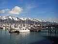 Seward harbour.JPG