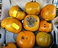 Sharon fruits.jpg