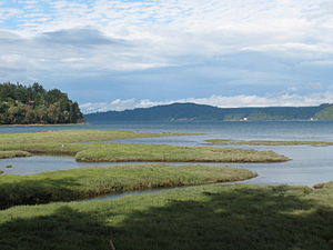 Shoalwater Bay Tribe - Shoalwater Bay in western Washington