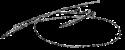 Arquiduque Carlos, assinatura do duque de Teschen