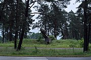 Silets Sokalskyi Lvivska-place of battle of Soviet soldiers with Nazi invaders-2.jpg