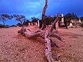 Silver Terrace Cemetery Virginia City NV - panoramio.jpg