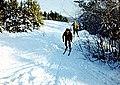 Ski in Toksovo.jpg