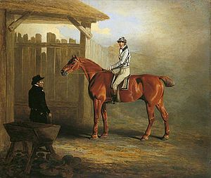 Soothsayer (horse) - Soothsayer', Winner of the St Leger