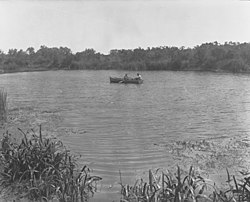South East Drainage, Ewen Ponds showing row boat with two men(GN11011).jpg