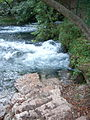 Spring of the River Bosna, Sarajevo (1).JPG