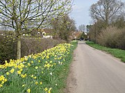 Springtime on the Butts - geograph.org.uk - 1805017