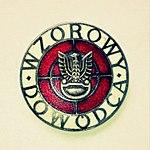 Srebrna Odznaka Wzorowy Dowódca wz. 1974.jpg