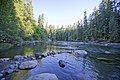 Stamp River Provincial Park, Vancouver Island (36037814943).jpg