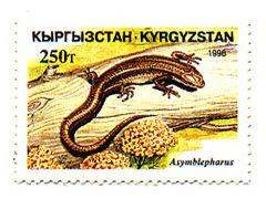 Stamp of Kyrgyzstan 113.jpg